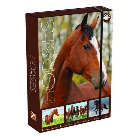 Füzetbox, T-Creativ termék